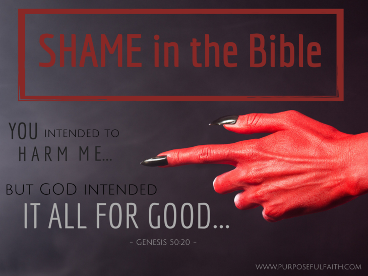Shame in the bible