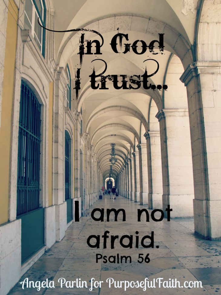 trust fear fighting
