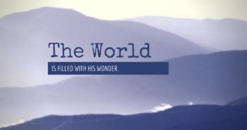 Returning to Wonder