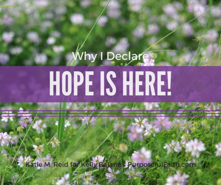 Why I declare that hope is here image with a field of purple flowers by Katie M. Reid Photography
