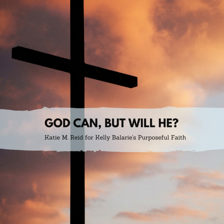 God Can, But Will He quote by Katie M. Reid for Kelly Balarie's Purposeful Faith blog
